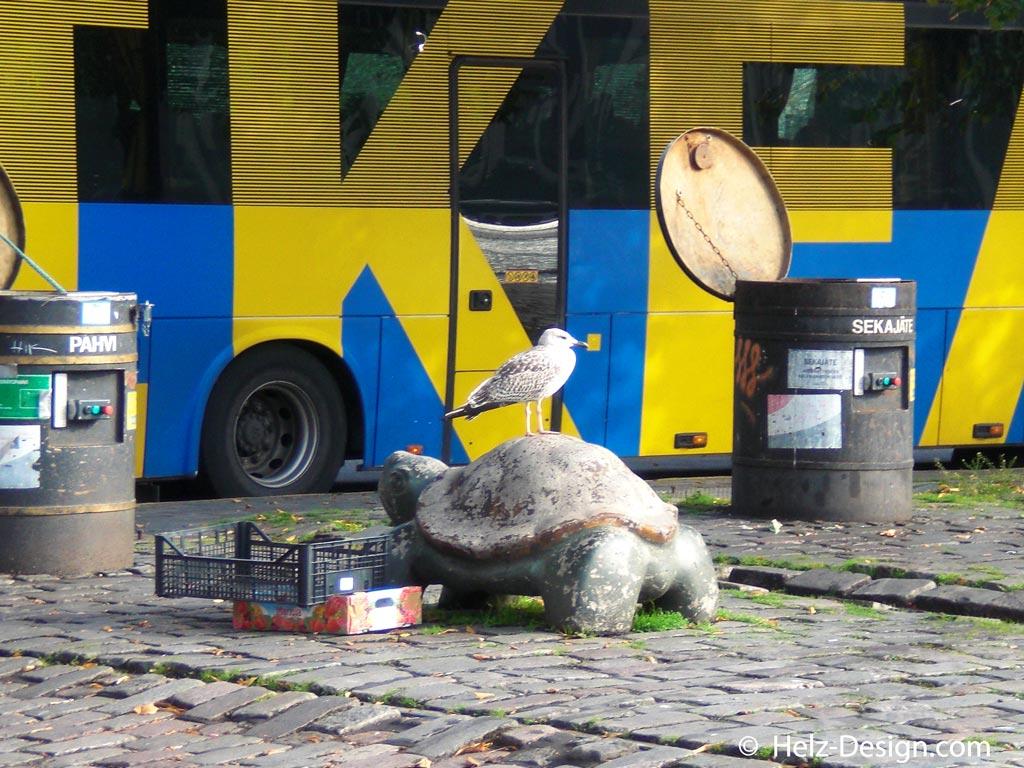 Die berühmten Schildkrötenpoller, bequeme Sitzplätze für Möwen …dahinter IKEA Bus