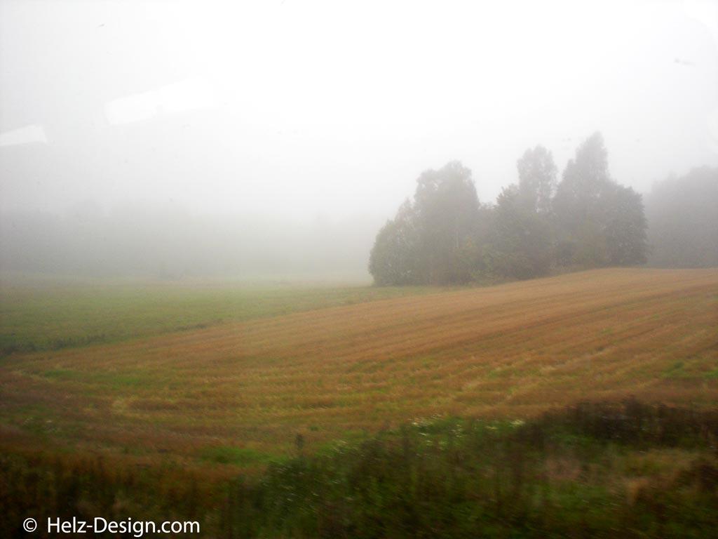 … Nebel wallen