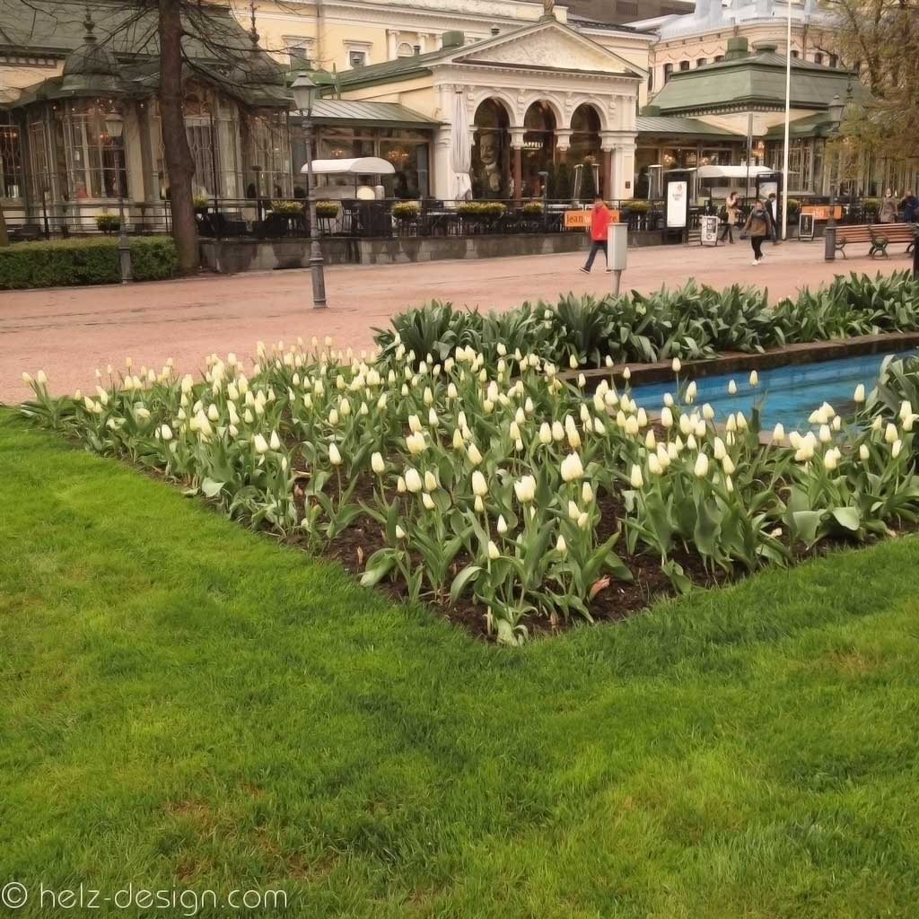 Tulpen und andere Frühlingsblüher waren überall.