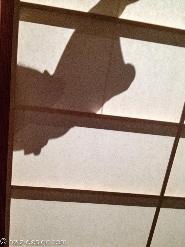 Schattenspiele im Arkkitehtuurimuseo