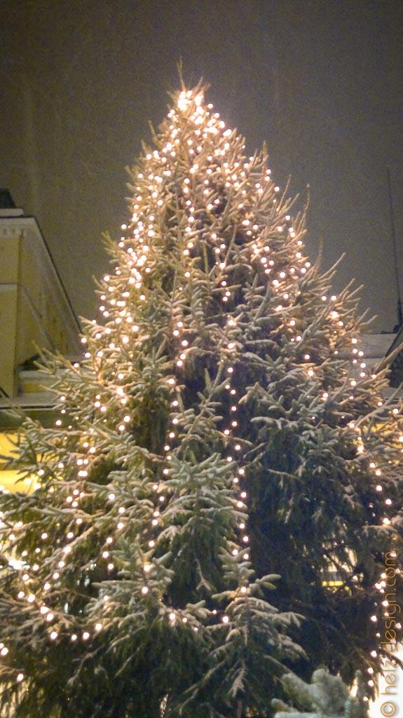 Weihnachtsbaum vorm Cafe Kappeli
