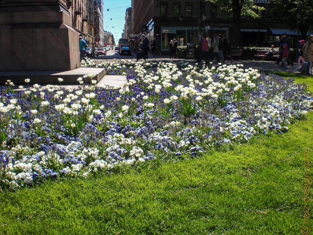 Blau-Weiße Blumen zu Füßen von Johan Ludvig Runeberg.