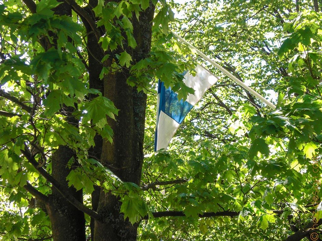 Finnische Flagge durch Bäume