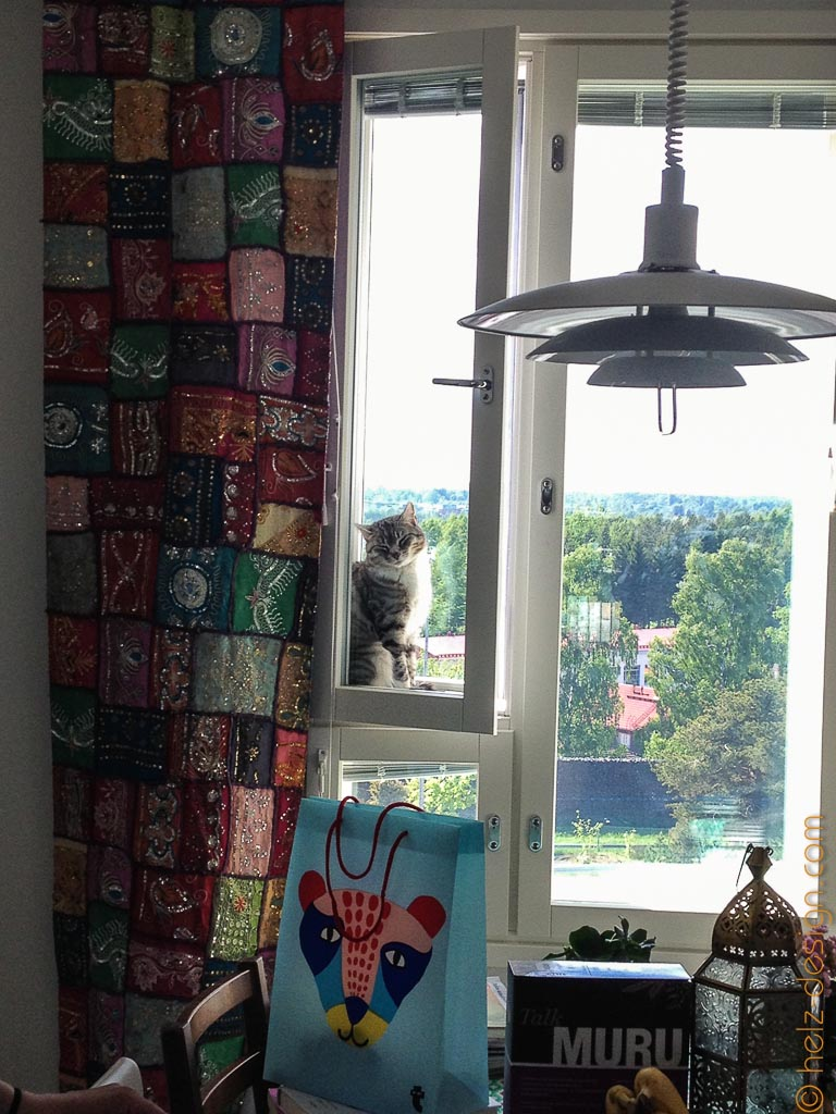 Tikkru im Fenster