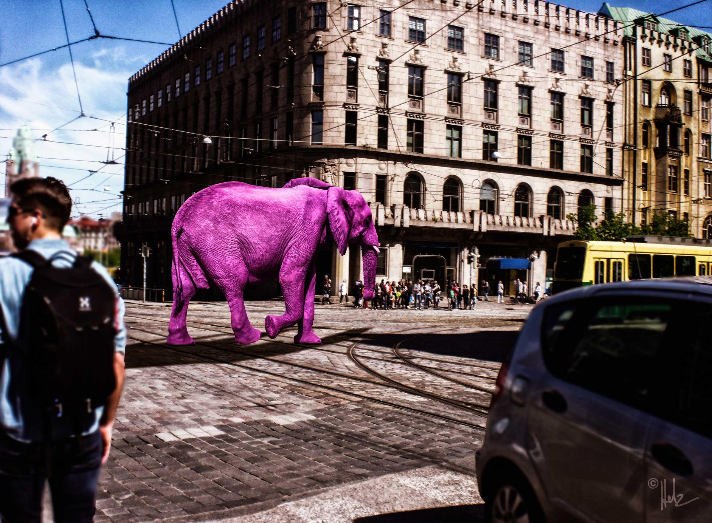 rosa elefant auf der mannerheimintie © helz-design.com