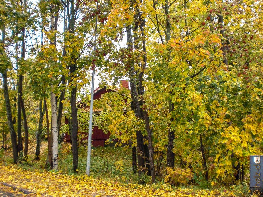 Rotes Holzhaus grüßt