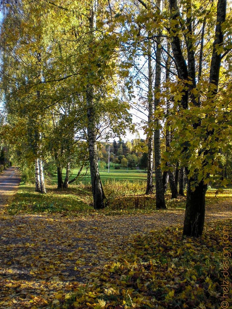 Henrik Sohlberginpuisto