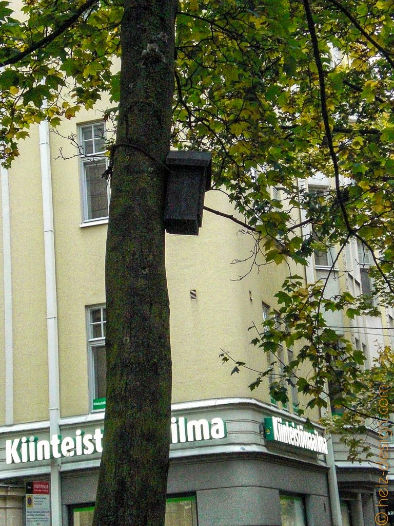 Das teuerste Vogelquartier Helsinkis