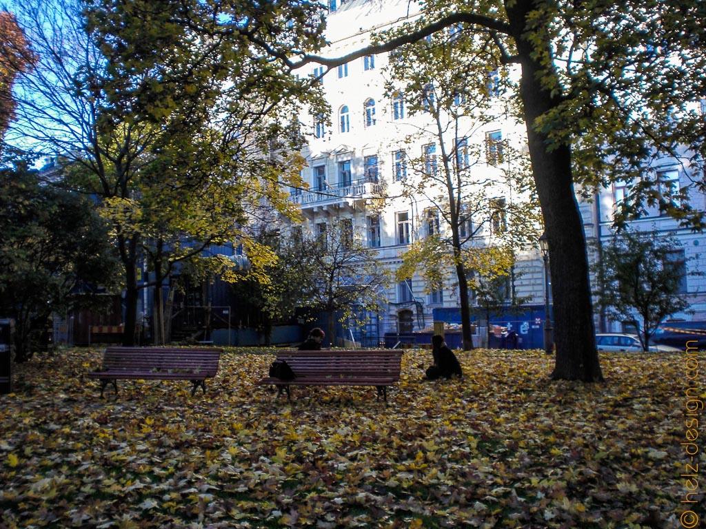 Fotoshooting: Frauen und Blätter