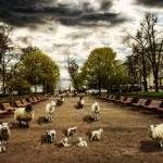 Helsinki Secrets revealed: Esplanadi in old times