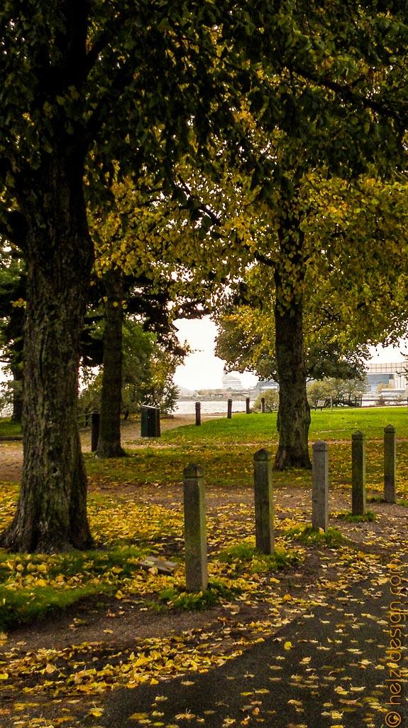 Durch die Bäume nach Hernsesaari blicken