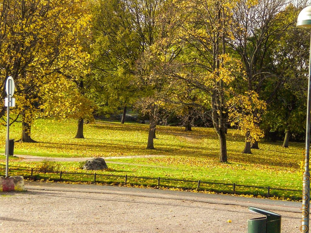 Park ohne Auto