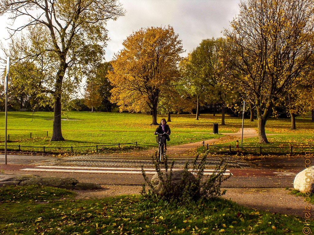 Park mit Radfahrer