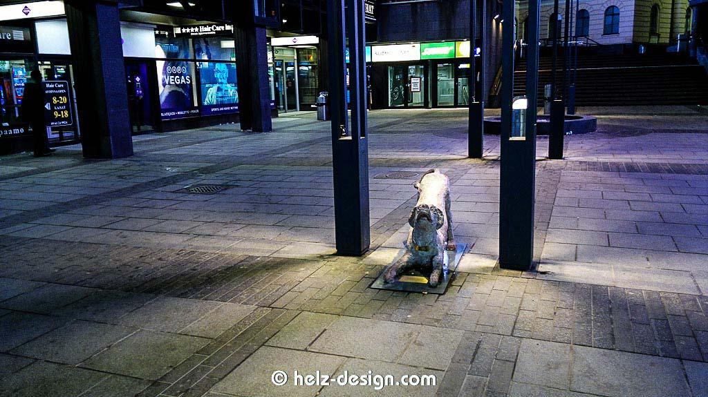 odottava koira – wartender Hund