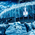 Helsinki secrets revealed: Icepirates
