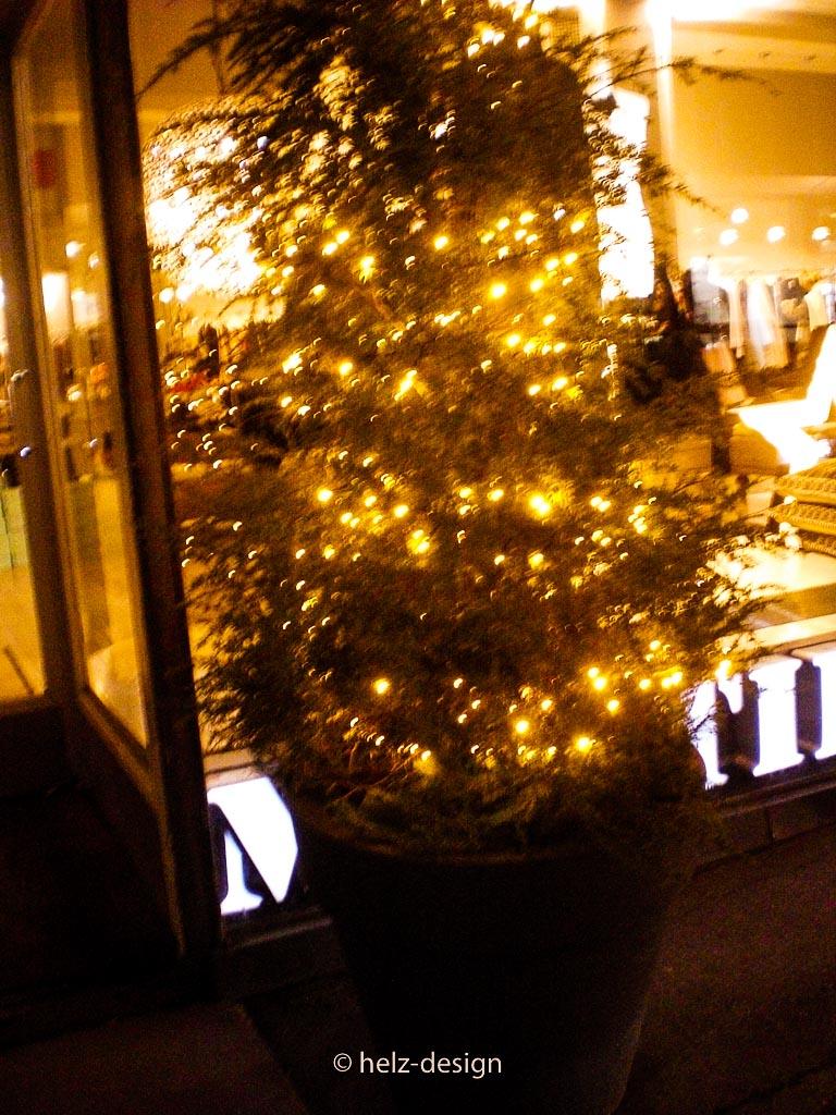 Weihnachtsbäume vor den Läden