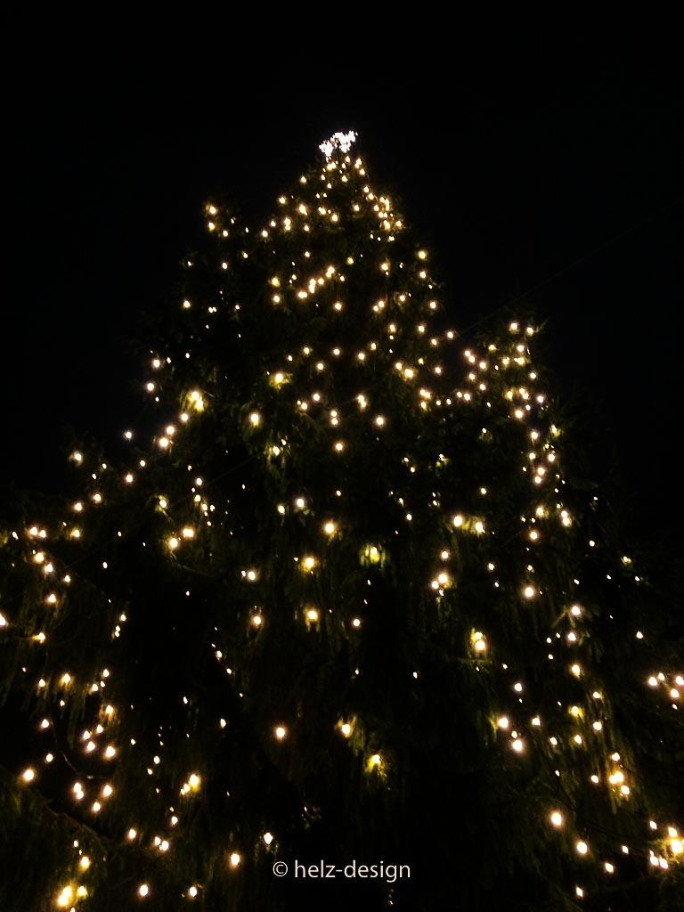 der große Weihnachtsbaum