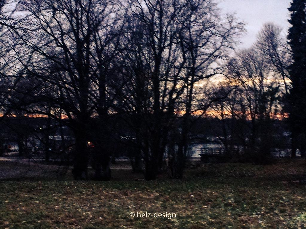 Durch die Bäume glitzert Licht