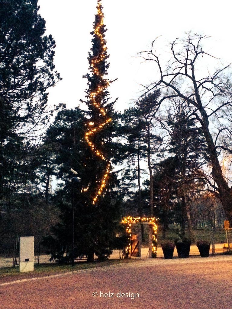 weihnachtlicher Wintergarten