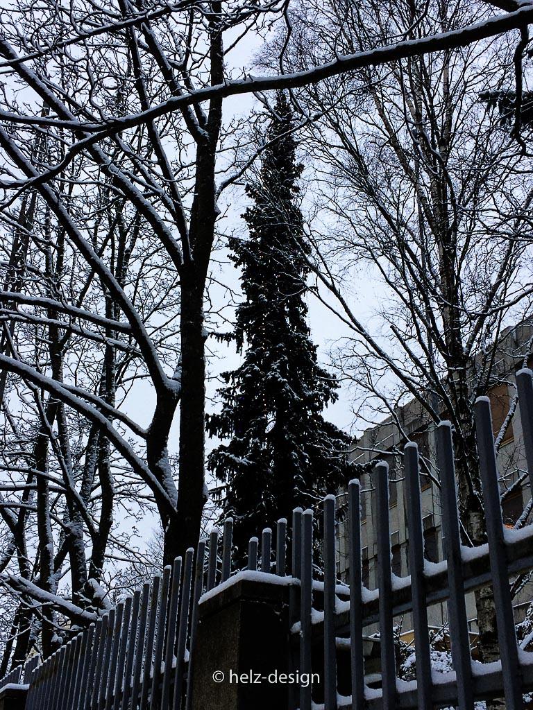 Weihnachtsbaum an der russischen Botschaft