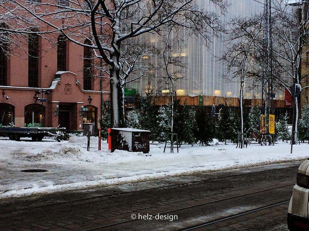 Fredrikintori – wollen Weihnachtsbaum kaufen?