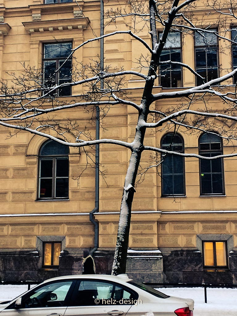 Das Luxusvogelhaus …Bulevardi 18