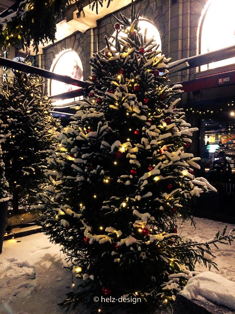 Weihnachtsbäume vorm Bierhaus
