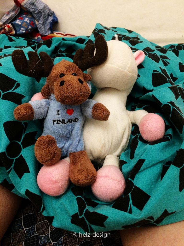 Paavo und Ulf sind auch mit dabei und machen sich auf meinem Kissen breit