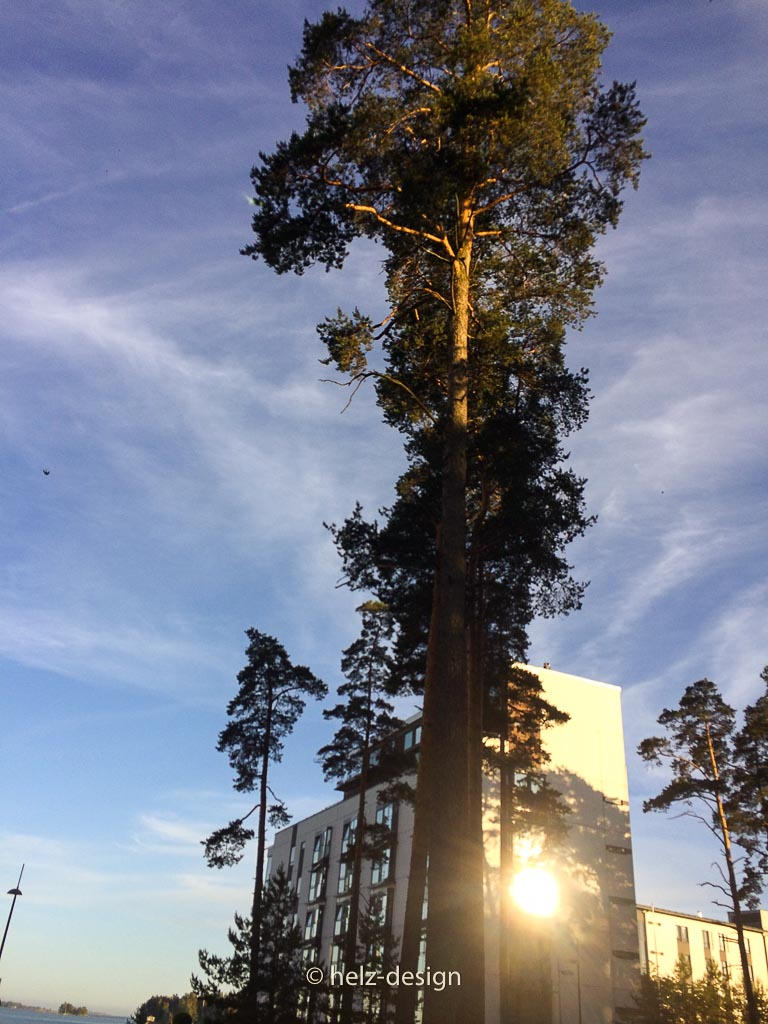 Aurinkolahden puistotie