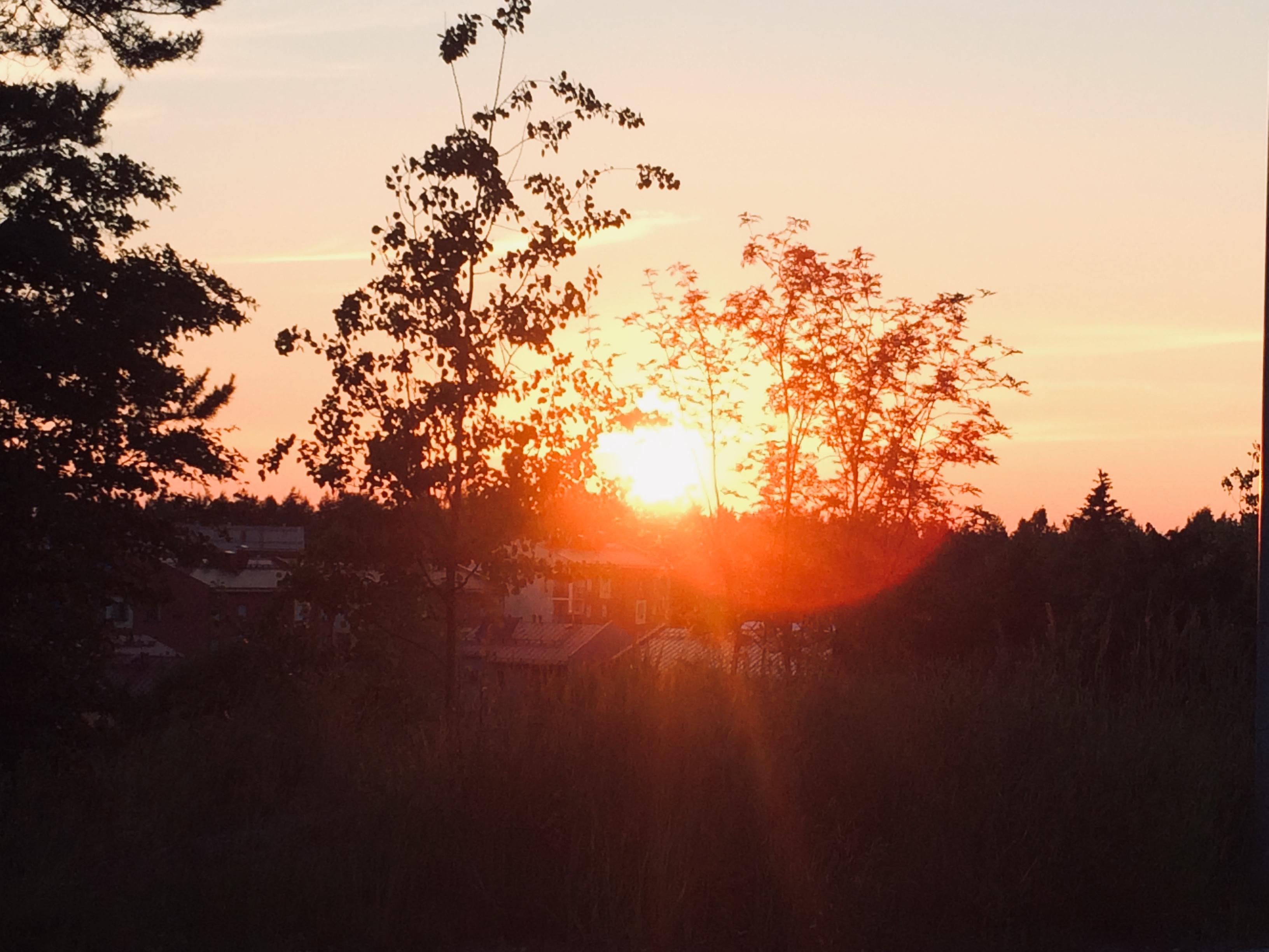 Sonnenuntergang in Jakomäki