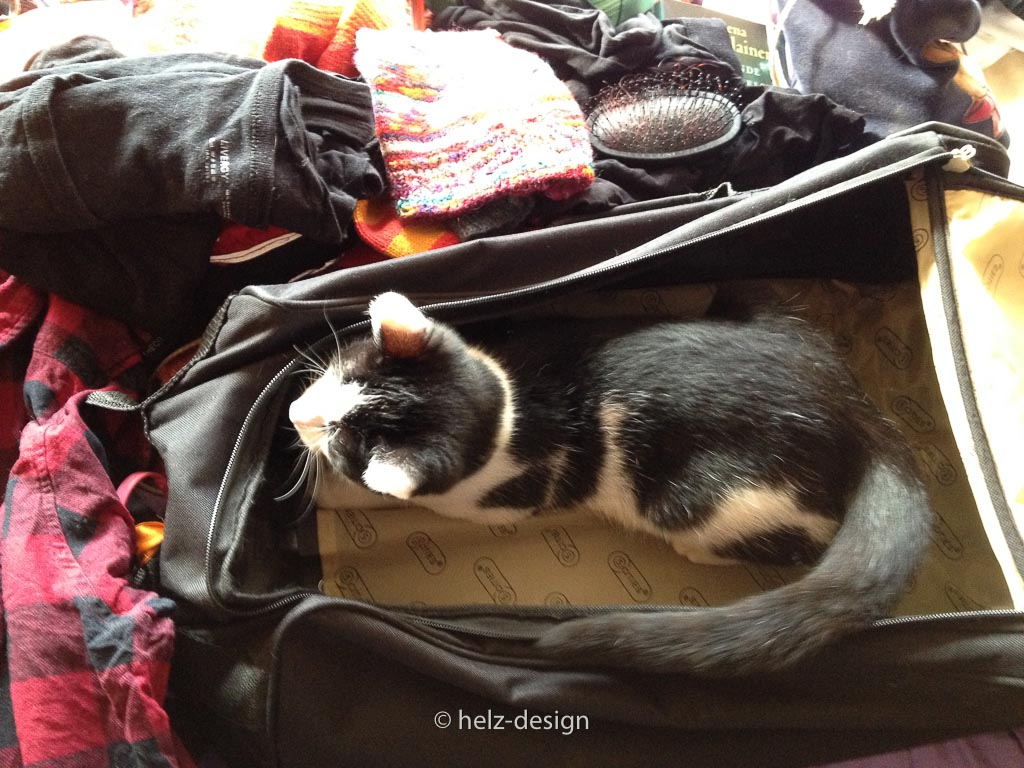 Yoshi hilft packen